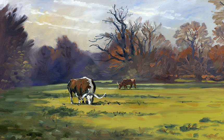 english longhorns, windsor great park, plein air, oil painting, cattle