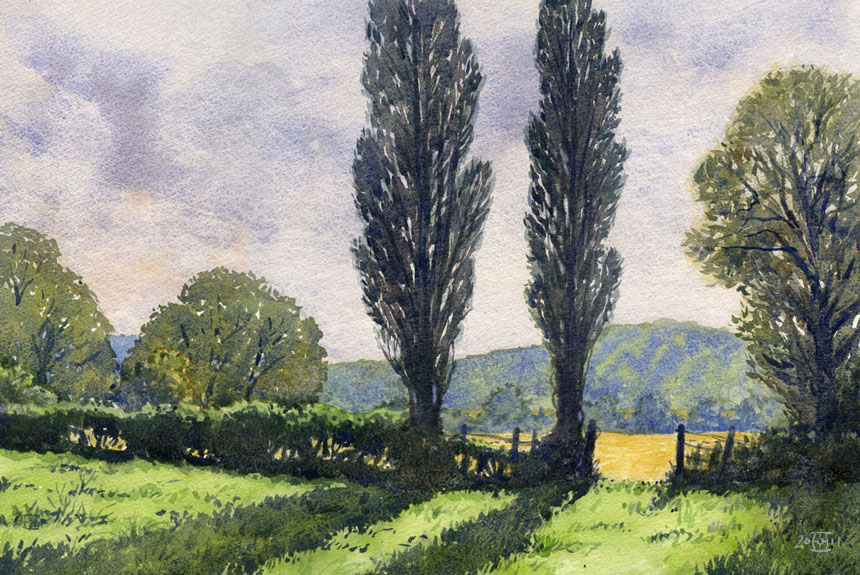 Herefordshire, Poplars, watercolour, wye valley, painting, rob adams