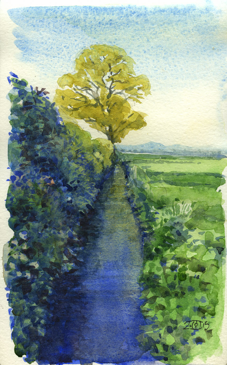 Somerset Levels, watercolour